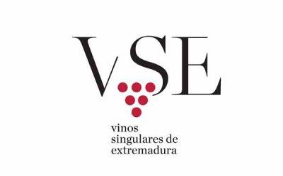 VSE-1.jpg